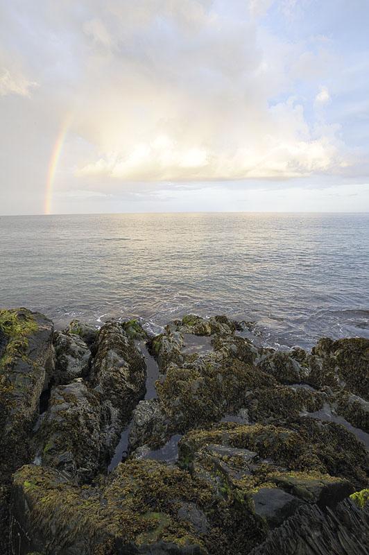 Greystones Coast001